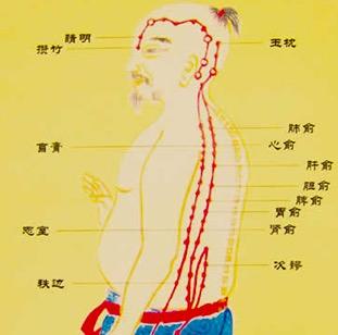 中医补肾可以延缓衰老吗