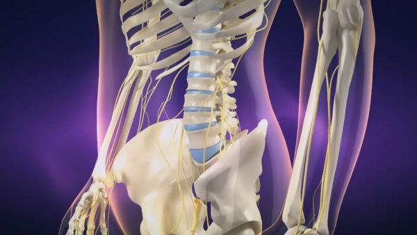 医疗教学手术三维3D动画演示视频制作多少钱? 动画制作 第2张