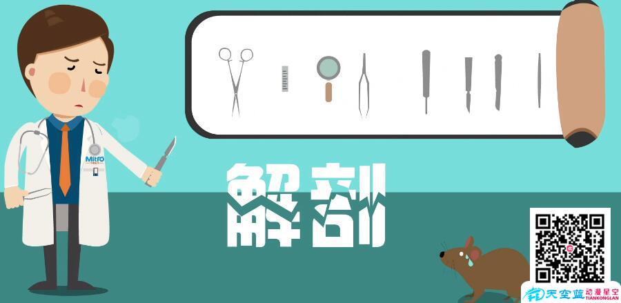创意动画宣传片制作公司,黄鹤楼动漫专业铸就品质