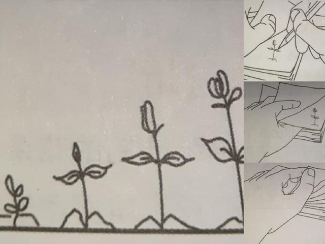 动画是如何制作出来的?