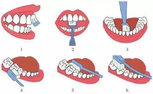 动画制作《如何正确刷牙?每天刷2次 竖刷3分钟以上》健康医疗知识科普