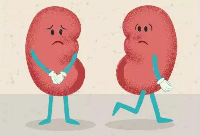 冒个炮动画创作《长期高血压 肾脏好受伤》健康医疗知识科普