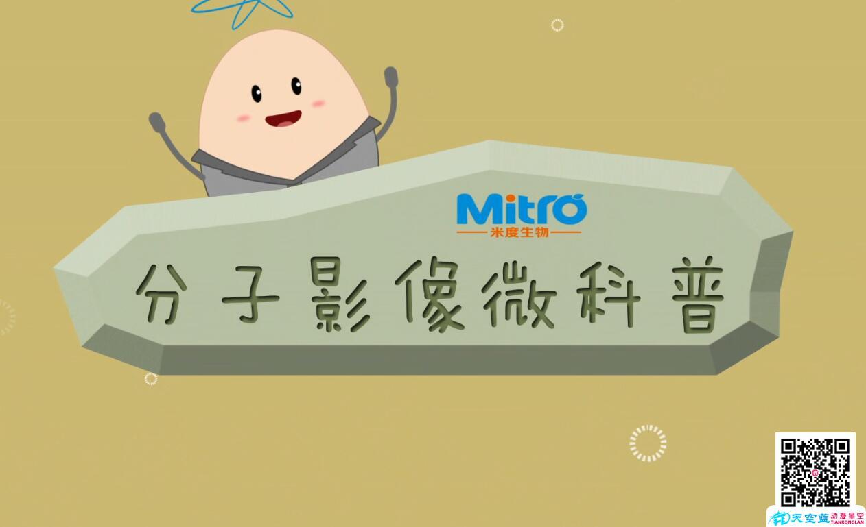 广州动画制作:flash动画与MG动画制作成本比较