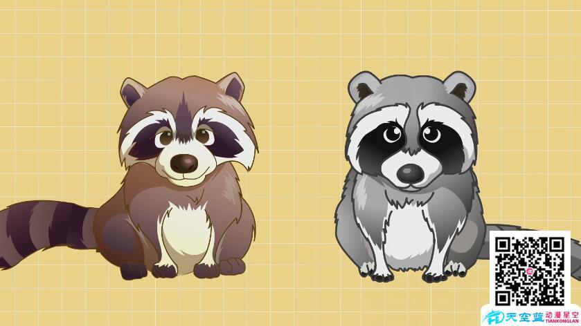 科普动画制作《为什么貉和浣熊很像呢?》