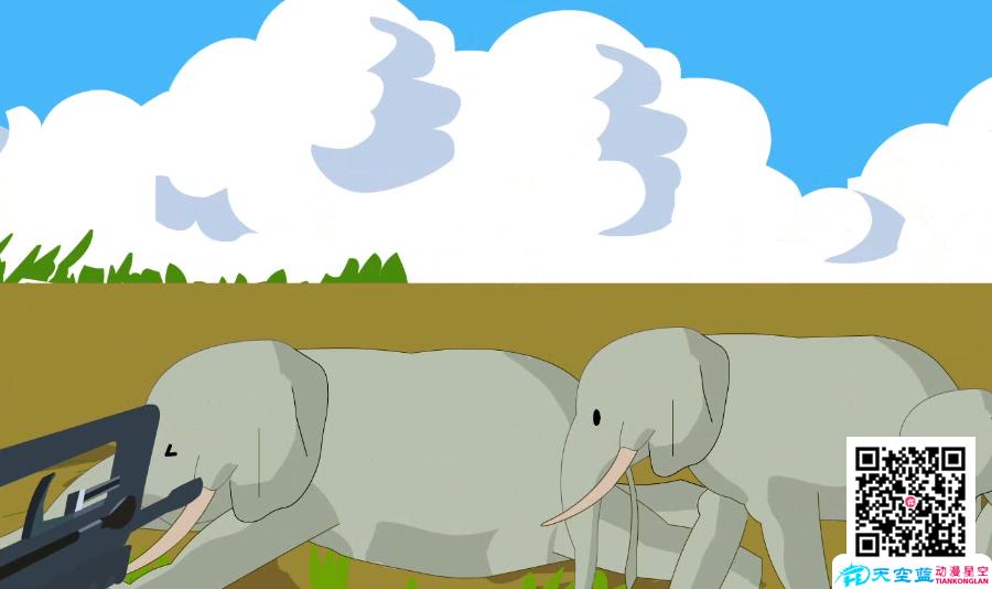 动画视频制作《为什么越来越多的大象生来就没有象牙?》