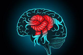 动画制作『如何可以快速判断脑卒中,脑梗,脑出血?』健康知识mg动画科普