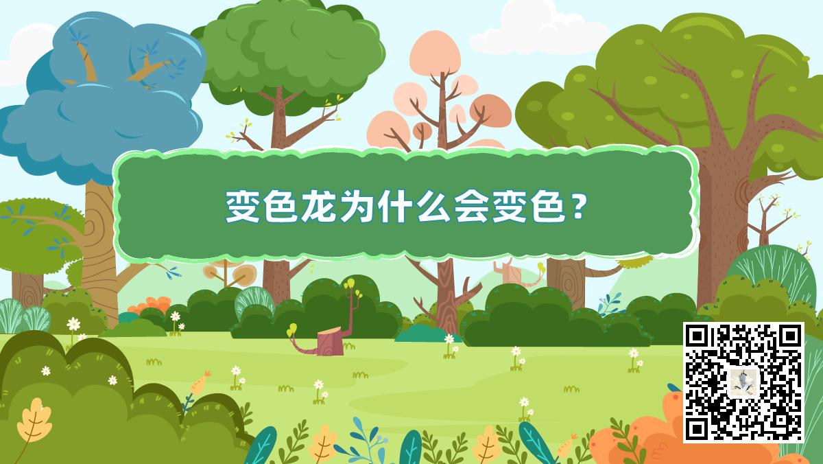 十万个为什么动物篇封面(变色龙二维码)-01-01.jpg