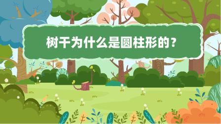 『樹(shu)干為什麼是(shi)圓柱(zhu)形(xing)的?』冒個(ge)炮十萬個(ge)為什麼動漫視界