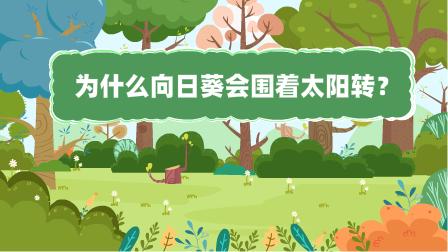『為什麼向日(ri)zhan)崳?盤 餱 俊幻案ge)炮十萬個(ge)為什麼動漫視界