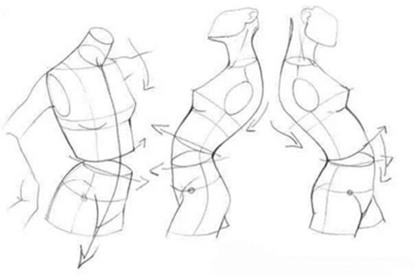 原画设计:标准人体绘画