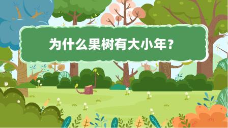 『為什麼果(guo)樹(shu)有(you)大(da)小年(nian)?』冒個(ge)炮十萬個(ge)為什麼動漫視界