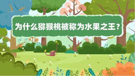 『為什麼獼猴(hou)桃被稱為水果(guo)之王?』冒個(ge)炮十萬個(ge)為什麼動漫視界