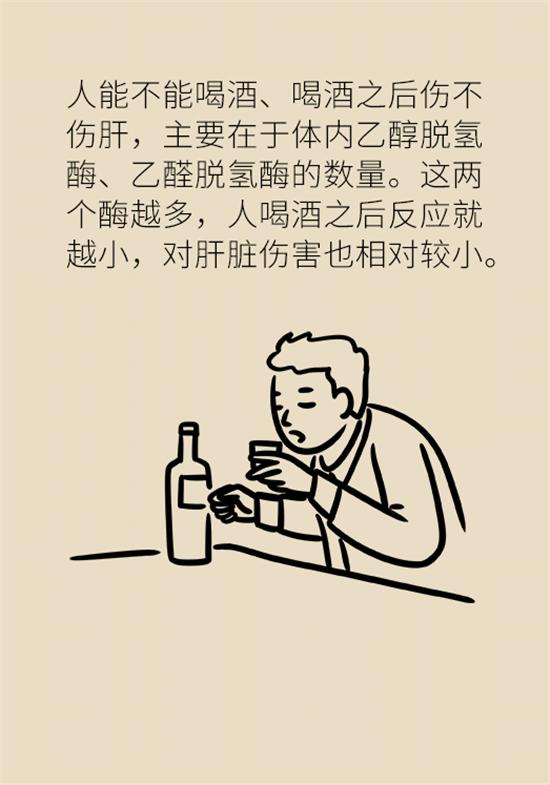 喝酒之后会伤肝?这个因素很重要
