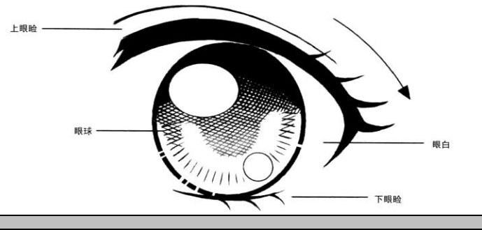 美少女漫画入门-眼睛的画法