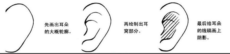 美少女耳朵画法.jpg