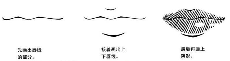 实类嘴巴的绘制步骤.jpg