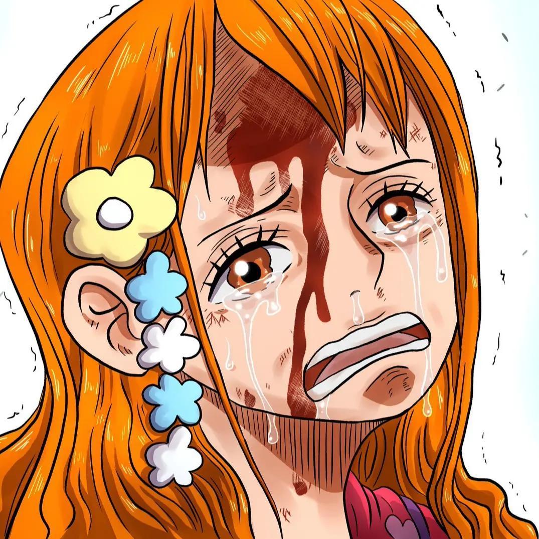 日本制作动漫:海贼王